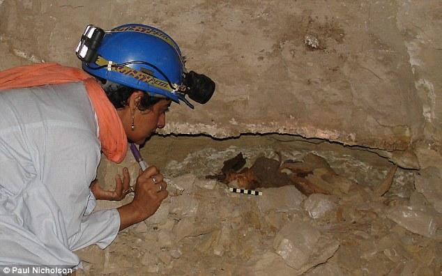 Восемь миллионов мертвых собак найдены в египетских катакомбах