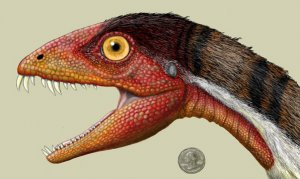 Daemonosaurus chauliodus - новый динозавр из позднего триаса