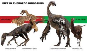 Многие динозавры - тероподы были травоядными