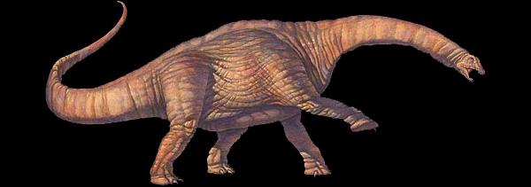 Реконструкция аламозавра. Изображение с сайта www.healthstones.com